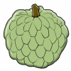 illustration of a sugar apple, a sweet pulpy fruit with a thick scaly rind and black seeds
