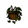 A colored illustration of a dried plant on a pot with leaves fallen on the ground.