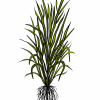 an illustration of a Rice. Edible starchy cereal grain and the grass plant  by which it is produced.