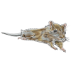 an illustration of a gerbil
