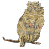 an illustration of a gopher